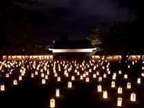 【松江水燈路】松江の夜を彩る行灯が並ぶ、幻想的なイベント