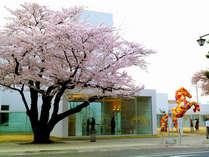 ☆★十和田市現代美術館★☆  観覧チケット付プラン♪<特典付>