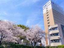 春は桜が綺麗です!