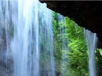 新緑の季節の雷滝