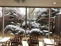湯上りサロンの中庭にも雪が降りました