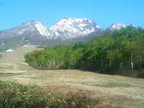 *爽やかな高原の風が心地良い夏の妙高山。ホテル隣のカヤバスキー場ゲレンデも、緑に包まれます。