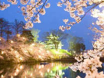 【バス送迎付】春爛漫♪高田城百万人観桜会★夜桜観賞