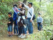 *森林浴でリフレッシュ♪六甲山ハイキングを楽しもう!