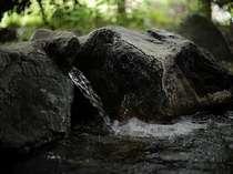 源泉から懇々と湧き出す温泉
