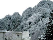 塩沢温泉 七峰館