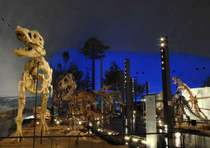 夏はやっぱり恐竜博物館♪特別展示チケット付1泊朝食プラン♪