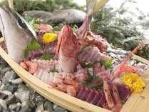 地魚のお刺身
