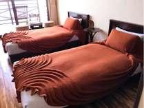 洋室ツインのお部屋です。最大2名様までご宿泊可能です。