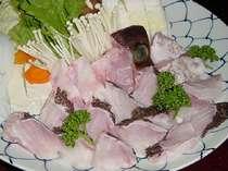 脂の乗った肉厚な身♪   和歌山の冬はやっぱりクエが一押し!