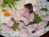 【クエ鍋】脂の乗った肉厚のクエ♪ 和歌山の冬はこれが一押し!