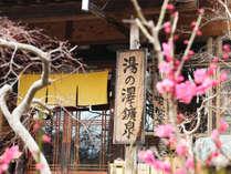 春の湯ノ澤鉱泉 桃の花咲く季節
