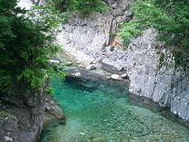 *周辺観光「阿寺渓谷」/エメラルドグリーンが美しい阿寺渓谷。入口までは当館から車で2分!