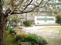 桜満開の頃の西坂公園(日本二十六聖人殉教地)