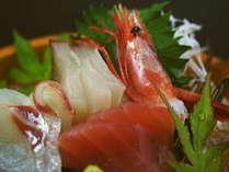 旬魚の造り(料理一例)