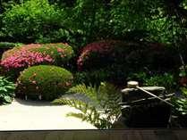 春の詩仙堂の庭園風景