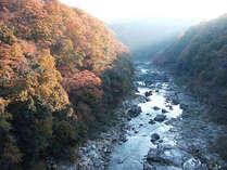 【秋得プラン】紅葉スポット多数!秋の伊賀観光をお得に楽しもう♪嬉しい特典付★