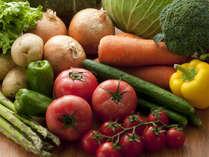 グリーンシーズンには主にとれたて野菜を使用します。