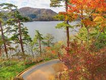 四季折々の景色が楽しめる絶景露天温泉。秋の紅葉に包まれて。