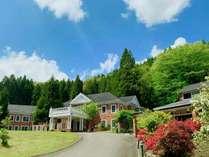 ホテルと春の木花
