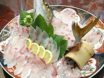 獲れたて新鮮地魚の姿造り。見た目にも勇壮で味も最高!