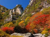 【紅葉狩り】昇仙峡の渓谷美★鴨すきとワイン風呂を愛でる