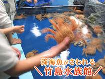 深海魚がさわれる☆TVでも話題の竹島水族館/蒲郡3大特典付きプランで無料に