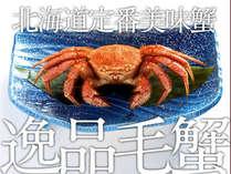 毛ガニ付(イメージ)