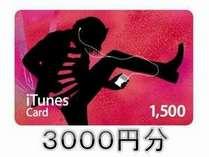 ◆3,000円iTunesカード付き◆プラン♪♪