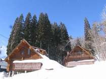 雪景色の中に佇むログハウス
