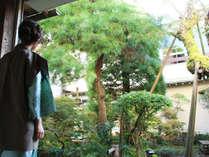 【特典付★女子旅】ツヤ肌美人☆24H入浴OK!四季の旬を感じるお料理とともに♪