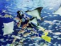 【サンシャイン水族館】ごはんタイムも人気!海の動物たちのありのままの姿を見られる