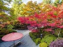 秋の庭園風景/紅葉は10月下旬~11月中旬頃)