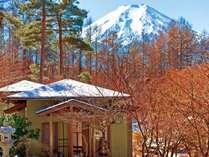 冬の庭園/見返り富士