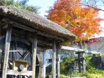美しい紅葉のそばに水車小屋