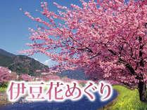 ≪関東一早い花便り≫海一望のお部屋へグレードアップ&特典付花めぐりプラン~ふじ春旅「花」