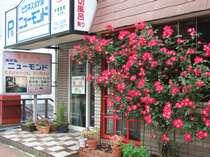 バラと季節のお花がお客様をお待ちしています。夜は看板が点灯します。