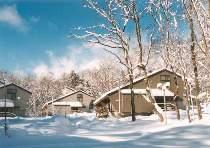 冬のラボランド