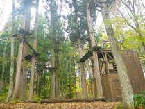 *【ハイロープコース】森の中で遊ぶ!!