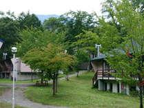 森の中にゆったりとロッジが点在しています。ロッジ周辺でBBQやテント泊なども可能です。