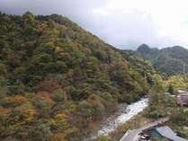 和室からの景観 紅葉