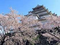 春の会津若松【鶴ヶ城】♪