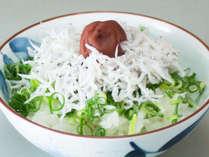 <ちりめん丼>たっぷりのねぎとおじゃこに土佐山産の梅干しをトッピング。薬味は季節により変わります。
