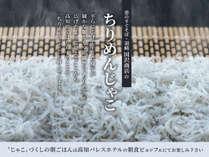 漁師町・須崎から直送、ちりめんじゃこ(シラス干し)は当館の定番!ちりめん丼やだし茶漬けで召し上がれ♪