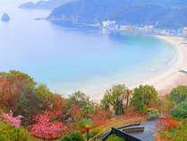 【春】当ホテル敷地内の河津桜と外浦海岸