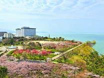 ホテル&リゾーツ 長浜 -DAIWA ROYAL HOTEL-