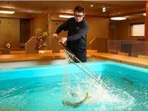 新鮮な魚介を堪能できる「いけす活魚芳泉鶴」地元が誇る海の幸を堪能