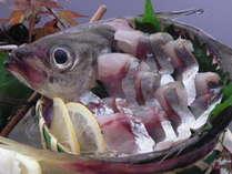 【秋割31】★特選会席☆旬魚姿造り×鯛のスープしゃぶしゃぶ×景勝館名物鯛釜飯