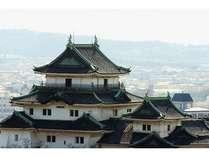 客室からみた和歌山城のアップです。