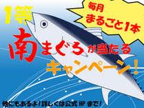 マグロが当たるキャンペーン開催9/1~翌2/29毎月南マグロが1本当たる!!